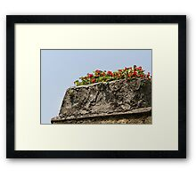 garden in summer Framed Print
