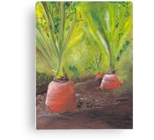 Carrots for life Canvas Print