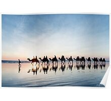 Camel Train at Sunset Poster