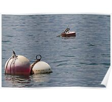 buoy on the lake Poster
