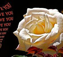 Roses mean love 2 by Carolyn Clark