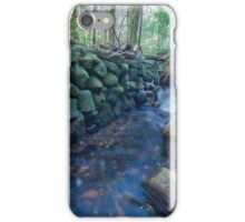 Another wall in the wilderness iPhone Case/Skin