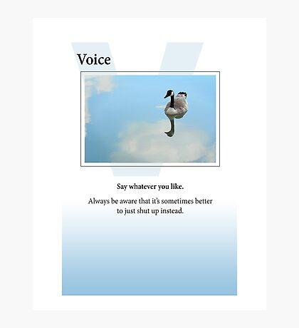 Voice Photographic Print