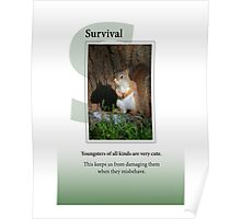 Survival Poster