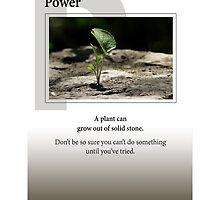 Power by Heartland