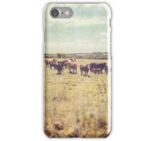 Irish cows iPhone Case/Skin