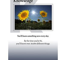 Knowledge by Heartland