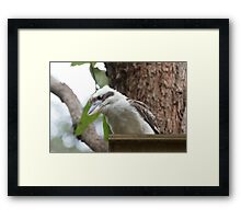 Who's In My House Framed Print