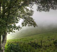 Foggy day in the countryside by Ms-Bexy