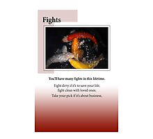 Fights Photographic Print
