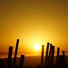 Sun's Up by Loree McComb
