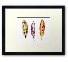 Tribal Feathers Framed Print