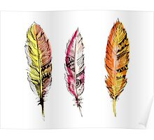 Tribal Feathers Poster