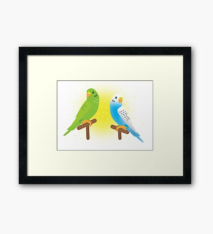 Two budgies Framed Print