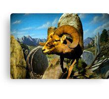 Mountain Sheep Watercolor Canvas Print