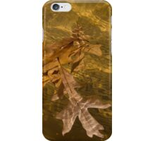 Honey Colored Sun Flares - Oak Leaves Floating in a Fountain iPhone Case/Skin
