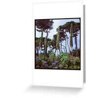 Queen Mary Gardens, Falmouth Greeting Card
