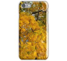 Magic Autumn leaves . October 2016 . No.2. Dr.Andrzej Goszcz. Canon 5D . iPhone Case/Skin
