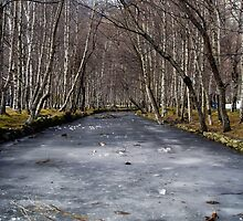 Frozen River by Nuno Pires