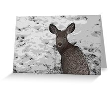 Cold Winter Survival Greeting Card
