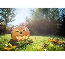 Halloween pumpkin on grass and leaves in the garden in nice sunny day Photographic Print