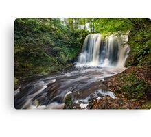Glenariff Waterfall / County Antrim / Northern Ireland Canvas Print