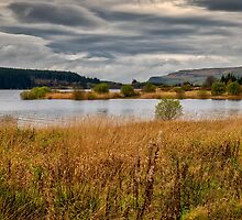 Carron Valley Reservoir by Jeremy Lavender Photography