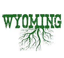 Wyoming State Roots by surgedesigns