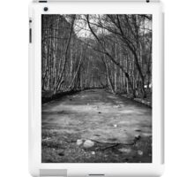Frozen River - B&W iPad Case/Skin