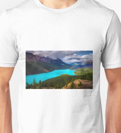 Spirit Of The Wolf Unisex T-Shirt