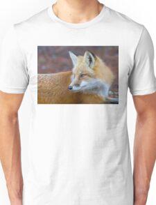 Red fox (Vulpes vulpes) in Algonquin Park T-Shirt