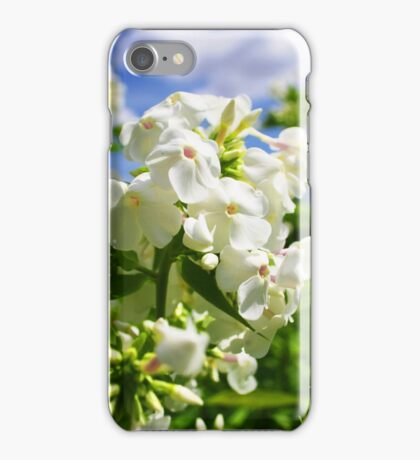 White and Blue Summer iPhone Case/Skin