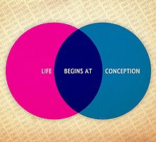 Life Begins At Conception by morningdance