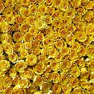 Yellow Roses by Ludwig Wagner