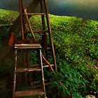 Forgotten in the Field by RC deWinter