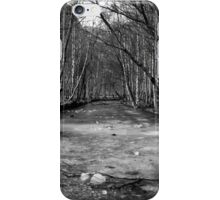 Frozen River - B&W iPhone Case/Skin