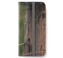 frosty rural fence iPhone Wallet/Case/Skin