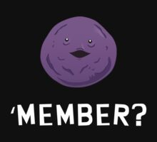 'MEMBER? by Théo Proupain