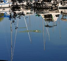 Bayfront boats and reflections by srosu