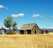 Little House on a Prairie  by Jan  Tribe