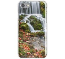 Littlebredy Waterfall, Dorset iPhone Case/Skin