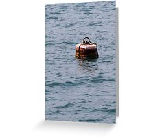 buoy on the lake Greeting Card