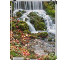 Littlebredy Waterfall, Dorset iPad Case/Skin