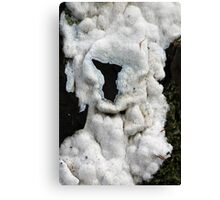 Furry Fungi Canvas Print