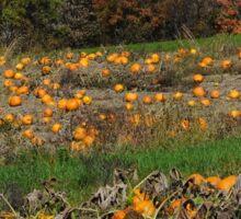 The pumpkin patch Sticker