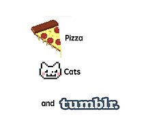 Pizza, Cats, And Tumblr by jodiecameron