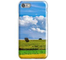 Ripe corn and vivid blue sky with beautiful clouds, season specific iPhone Case/Skin