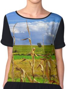 Ripe corn and vivid blue sky with beautiful clouds, season specific Chiffon Top