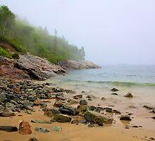 Sand Beach, Acadia by njordphoto