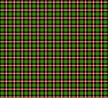 Green and Red Plaid by Greenbaby